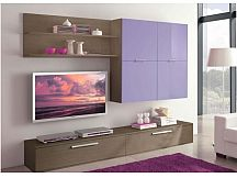 Proiectare mobilier living